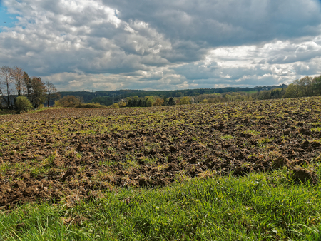 siembra: A German field a few days before sowing.