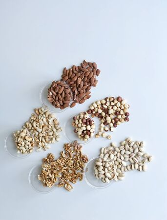 Healthy food. Nuts mix assortment on stone table top view. Collection of different legumes for background image close up nuts, pistachios, almond, cashew nuts, peanut, walnut. image Banco de Imagens