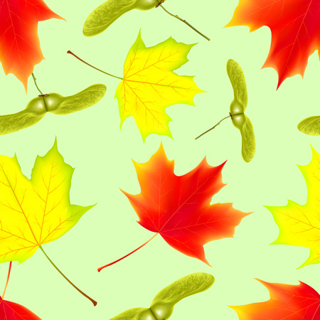 Seamless pattern with autumn falling maple leaves. Falling maple leaves. Vector illustration Illustration