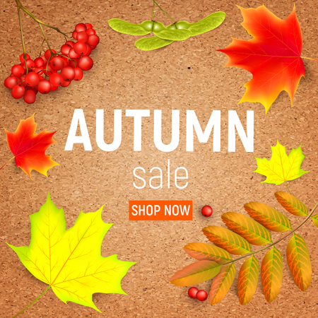 Sales banner on a crafting paper with maple autumn leaves and rowan branches with ashberry . Autumn maple leaf and red rowan branches with ashberry on a crafting paper. Vector illustration Illustration