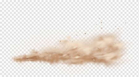 Road dust cloud with flying stones and particles isolated on transparent background. A cloud of dust sand flying from under the wheels of fast-moving car or motorcycle. Realistic vector illustration.