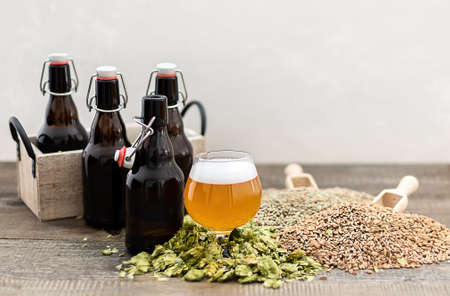 Home brewing concept. Craft lager beer with growlers and ingredients.