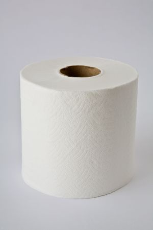 Roll of generic white toilet paper isolated on white.