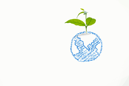 green growing plant in drawing globe , Environment conservation ,Corporate Social Responsibility Stock Photo