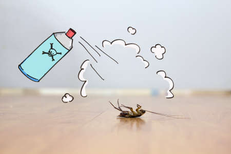 Dead cockroach on floor , drawing of pest control concept 写真素材