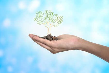Business success concept , money growing tree 写真素材