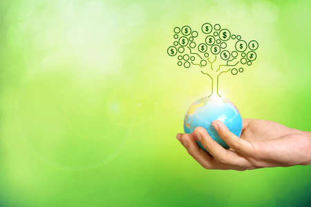 money tree on earth in hand , business success concept
