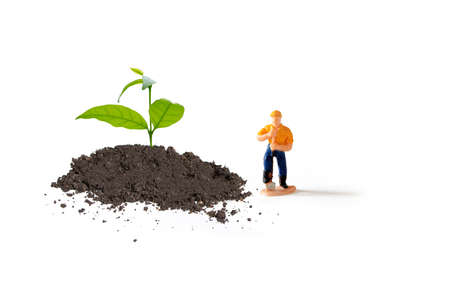growing plant tree with small figure man gardener