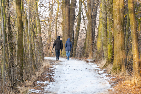 snowed: Silhouette of unrecognizable walking couple from rear view on snowed path in winter.