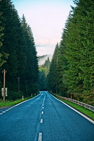 Straight empty asphalt raod in forest with misty mountains in background
