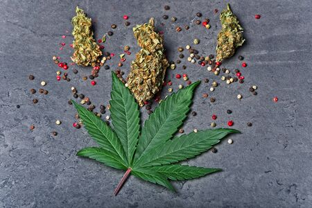 Cannabis buds and leaf with red color pepper. Caryophyllene terpene concept on grey background. Top view.