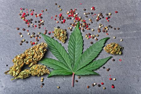 Cannabis buds and leaf with red color pepper all around. Caryophyllene terpene concept on grey background.