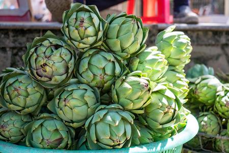 dalat: Artichoke (Cynara scolymus) in DALAT, VIETNAM