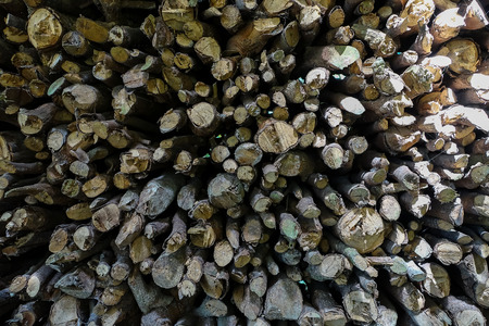 outdoor fireplace: A lot of firewood outdoor, brown background