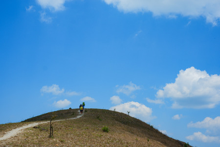 Hiking on the hill on a sunny day. High-quality image of a group of people walking in the park