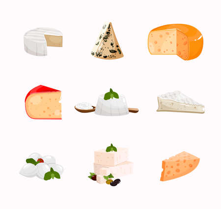 Icons set with different cheese types. Collection of popular cheese. Realistic Illustration of dairy products