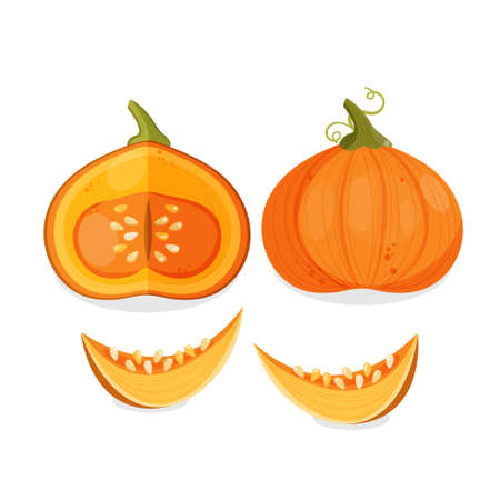 Orange whole pumpkin with curly stem, half and slice. Vector illustration of thanksgiving or halloween pumpkin