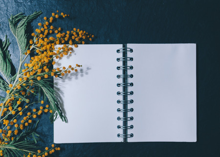 poems: Mimosa and notebook on the black stone background