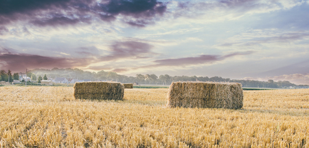 Hay after summer in the russian village