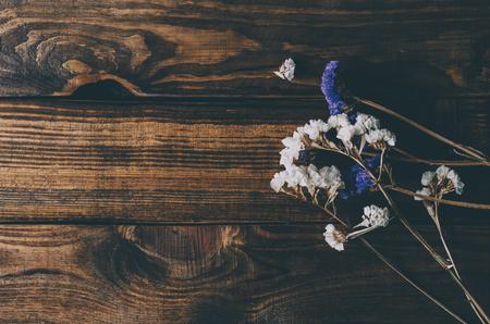 Dry flowers in interior on dark background Stockfoto - 117237858