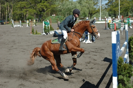 Horse jump contest on 26 04 2009 in Jaszkowo stud in Poland