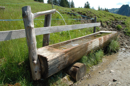 trough: Old wooden trough filled with water standing at wooden fence.