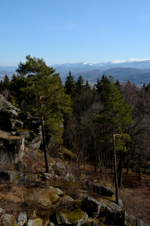 karkonosze: Rocks and trees in Karkonosze mountains in Poland. Sniezka mountain in snow visible in the distant background.