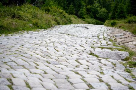 bumpy: Bumpy cobblestone road. Shallow depth of field