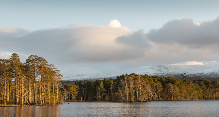 strathspey: Loch Mallachie in the Cairngorms National Park.
