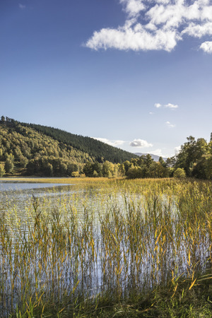 strathspey: Loch Pityoulish in the Cairngorms National Park in Scotland.