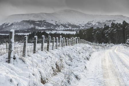 strathspey: Icy road to Glen More in the Cairngorms National Park of Scotland.