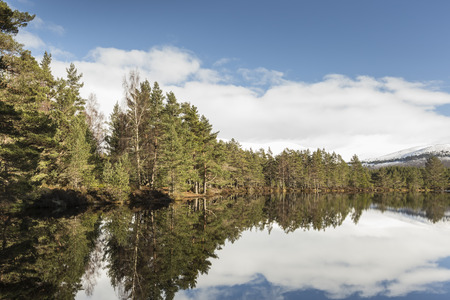 strathspey: Uath Lochans at Glen Feshie in the Cairngorms National Park.
