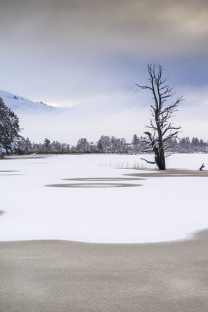 strathspey: Winter on Loch Mallachie in the Cairngorms National Park.