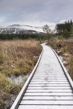 strathspey: Boardwalk path through marsh at Uath Lochan in the Cairngorms National Park of Scotland. Stock Photo