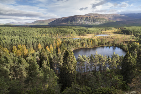 Uath Lochans in the Cairngorms National Park of Scotland.