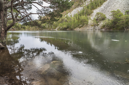 strathspey: Uaine Lochan , the Green Loch in the Cairngorms National park.