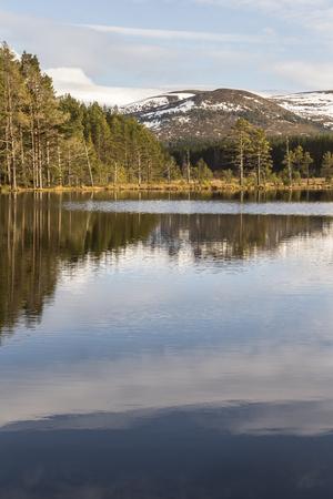 Uath Lochans at Glen Feshie in Scotland.