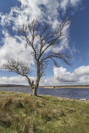 strathspey: Castle and Lochindorb on Dava Moor in Scotland.
