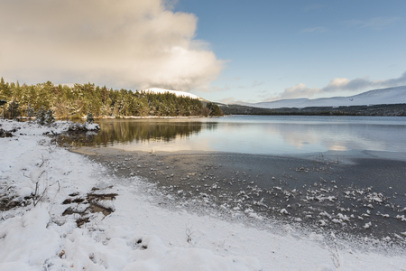 Winter on Loch Morlich in the Cairngorms National park of Scotland.
