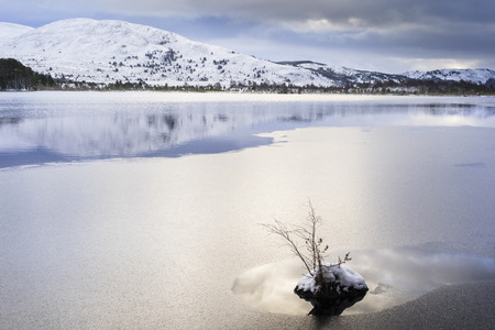 Winter on Loch Mallachie in the Cairngorms National  Park of Scotland.
