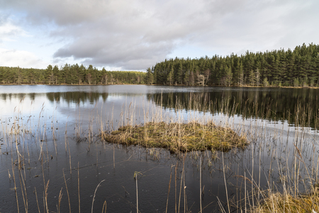 Uath Lochan at Glen Feshie in the Cairngorms National Park of Scotland. Stock Photo