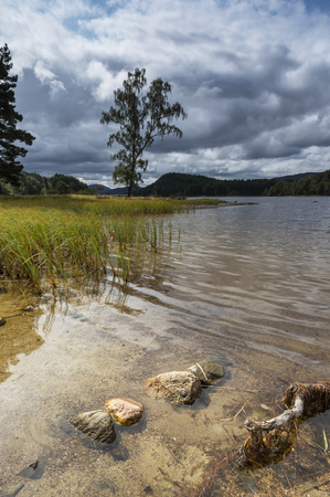 Loch Pityoulish in the Cairngorms National Park of Scotland.