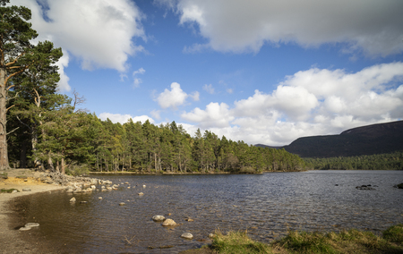 Loch an Eilein in the Cairngorms National Park of Scotland.