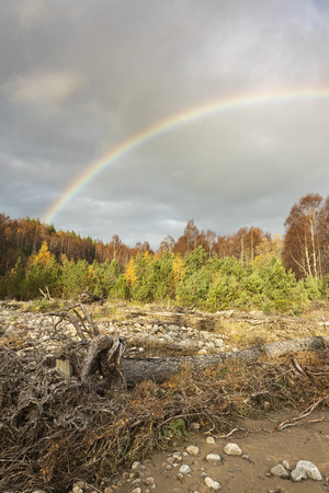 Rainbow over Glen Feshie in the Cairngorms National Park of Scotland.