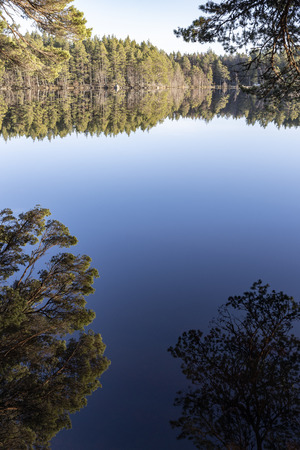 Tranquil Loch Garten in the Cairngorms National Park of Scotland. Stock Photo