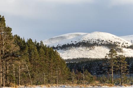 Snow on Creag Mhigeachaidh in the Cairngorms National Park of Scotland. Stock Photo