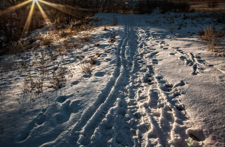 chatfield: Winter sunset on hiking trail in Colorado Stock Photo
