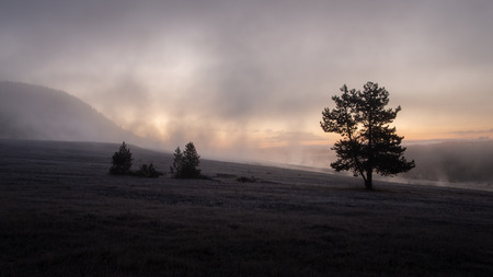 Misty landscape at Sunrise in Yellowstone Nation Park 版權商用圖片