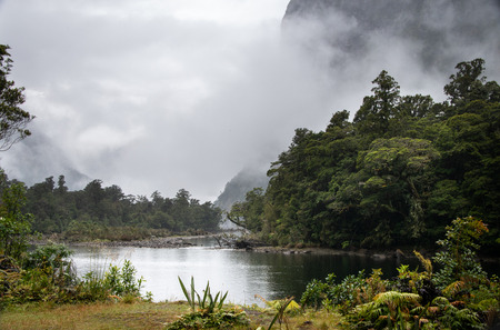 Sandfly point in Milford Sound, the end of Milford Track