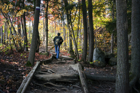 Man walking on the trail at Mont Tremblant with beautiful autumn colours, Canada